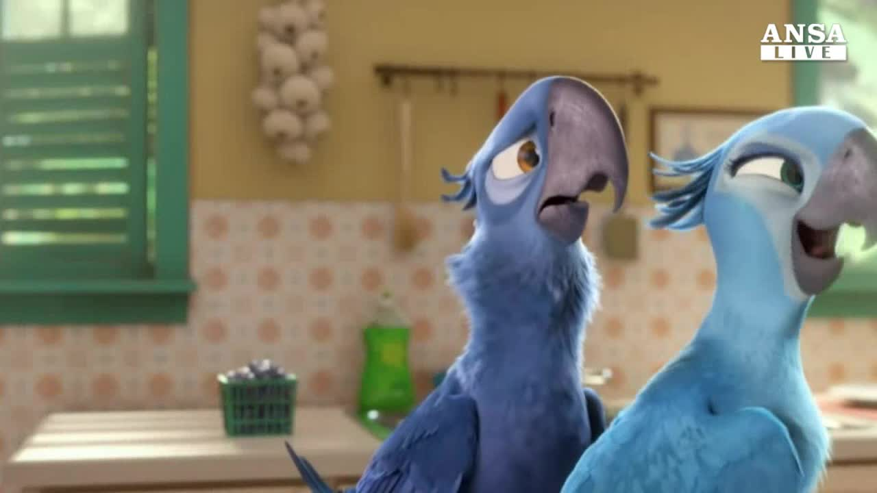 Cinema: arriva nelle sale Rio2 in 3D