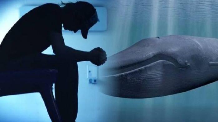 Video: Tuo figlio 'gioca' al 'blue whale'? Ecco come accorgersene