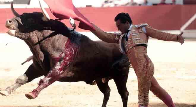 VIDEO: Francia, torero spagnolo muore incornato da un toro: ecco il video