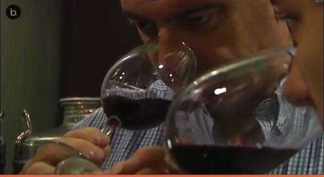 El vino en lata se consolida en el mercado